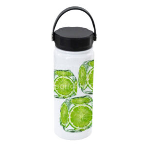 550 ml Stainless Steel Water Bottle w/ Swing Handle